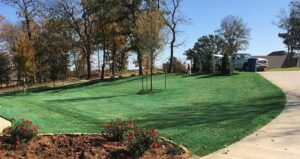 weed control treatment pre-emergent application